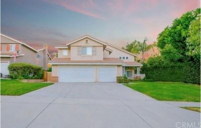Corona Single Family Home For Sale: 2832 Magellan Circle
