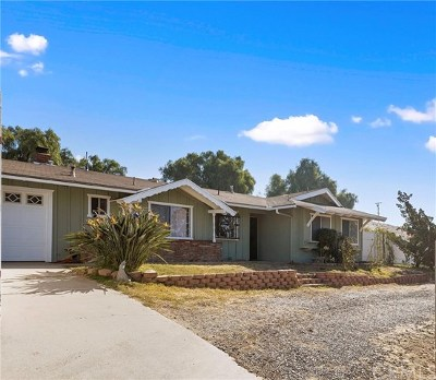 Norco Single Family Home For Sale: 1867 Valley View Avenue