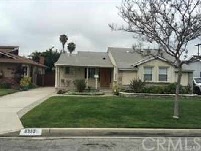 Downey Single Family Home For Sale: 8352 Otto Street