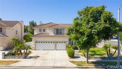 Corona Single Family Home For Sale: 1000 Trailview Lane