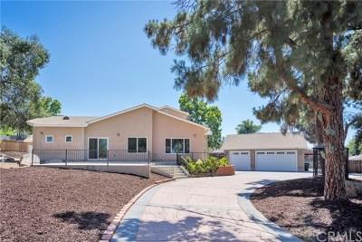 El Cajon Single Family Home For Auction: 1360 S Magnolia Avenue