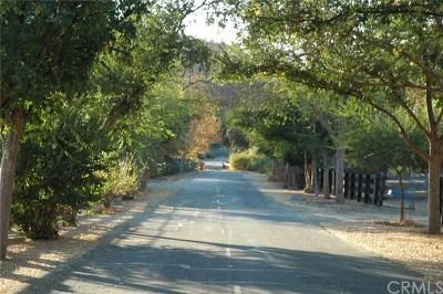 Murrieta Residential Lots & Land For Sale: Via Herradura