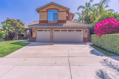 Corona Single Family Home For Sale: 2961 Alps Road