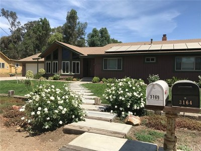 Norco Single Family Home For Sale: 3169 Hillside Avenue