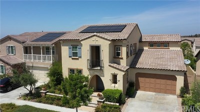 Irvine Single Family Home For Sale: 127 Yellow Daisy