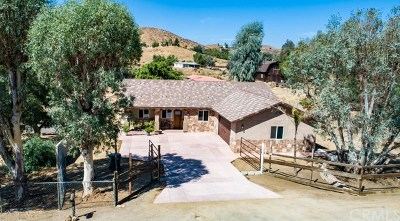 Perris Single Family Home For Sale: 27293 Plum Street