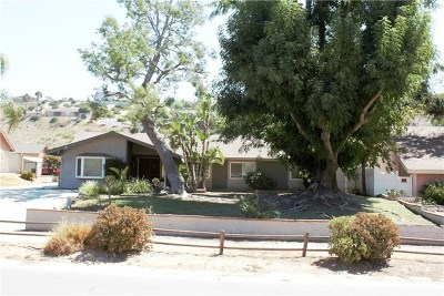 Norco Single Family Home For Sale: 1331 Corona Avenue