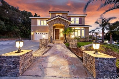 Corona Single Family Home For Sale: 965 Manor Way