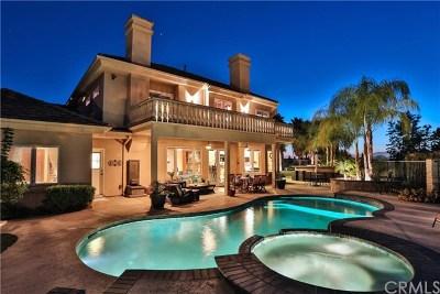 Riverside Single Family Home For Sale: 1151 Via Pardal
