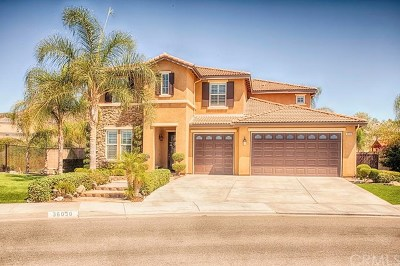 Wildomar Single Family Home For Sale: 36030 Country Park Drive