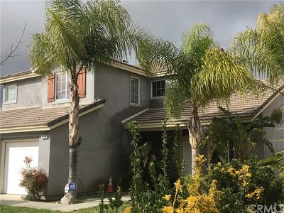 Perris Single Family Home For Sale: 758 Penasco Grande Street