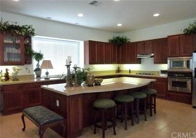 Lake Elsinore Single Family Home For Sale: 131 Via De La Valle