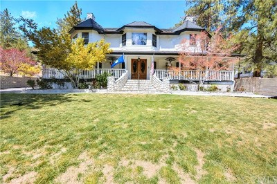 Wrightwood Single Family Home For Sale: 790 St Hwy 2