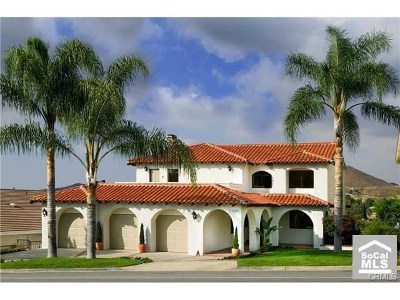 Canyon Lake Single Family Home For Sale: 22480 S Canyon Lake Drive