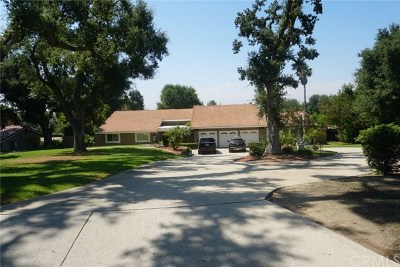 Rancho Cucamonga Single Family Home For Sale: 9785 Flying Mane Lane