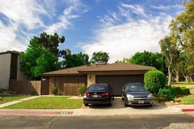 Upland Single Family Home For Sale: 1450 Lemon Grove Drive