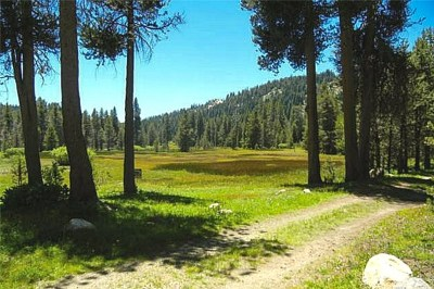 Madera County Residential Lots & Land For Sale: Beasore Road