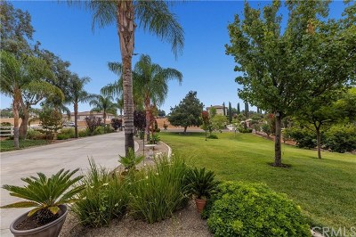 Riverside Single Family Home For Sale: 17573 Canyonwood Drive
