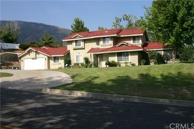 San Bernardino Single Family Home For Sale: 3738 W Meyers Road