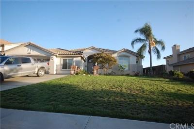 Yucaipa Single Family Home For Sale: 36321 Canyon Terrace Drive