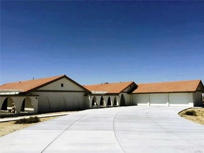 Apple Valley Single Family Home For Sale: 8510 Deep Creek Road