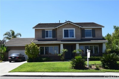 Riverside Single Family Home For Sale: 19197 Stagecoach Lane