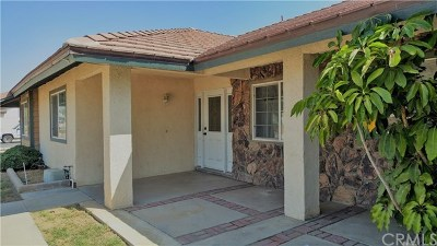 Jurupa Single Family Home For Sale: 5244 Trail Canyon Drive