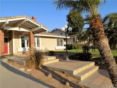 Norco Single Family Home For Sale: 4163 River Ridge Drive