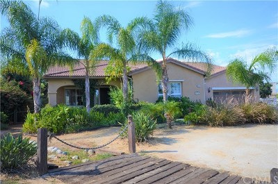 Perris Single Family Home For Sale: 19397 Avenue C