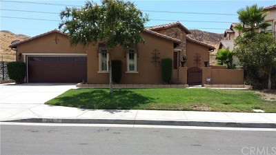 Perris Single Family Home For Sale: 365 Caldera Street
