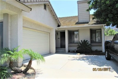Corona Single Family Home For Sale: 3518 Doe Spring Road