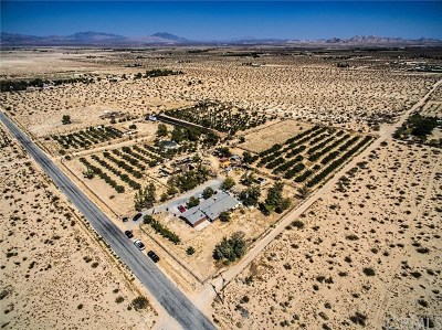 Lucerne Valley Single Family Home For Sale: 10925 Post Office Road #A