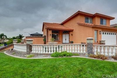 Rialto Single Family Home For Sale: 2549 W Via Bello Drive