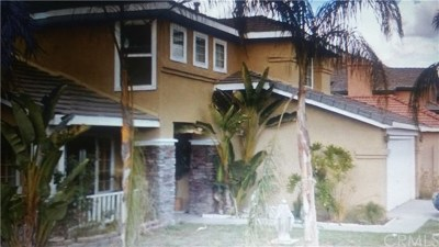 Perris Single Family Home For Sale: 1036 Ashton Place