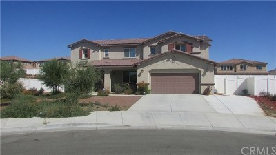 Moreno Valley Single Family Home For Sale: 13802 Jeanette Court