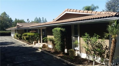 Redlands Single Family Home For Sale: 648 Los Altos Drive