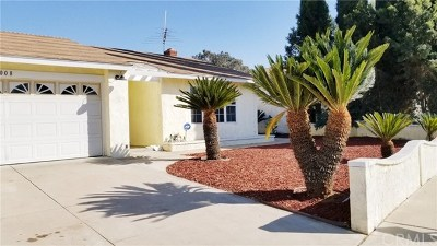 Riverside Single Family Home For Sale: 7008 Pasadena Place