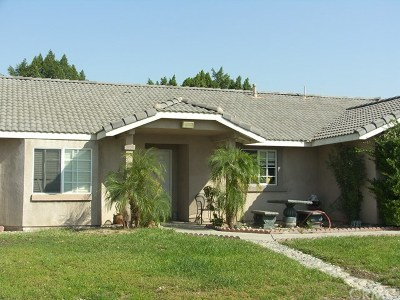 Fontana Single Family Home For Sale: 15352 Citron Avenue