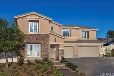 Murrieta Single Family Home For Sale: 37822 Peregrine Place