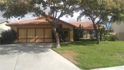 Perris Single Family Home For Sale: 1277 Wrigley Lane
