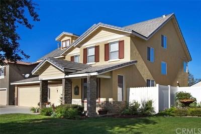 Riverside Single Family Home For Sale: 19324 De Marco Road