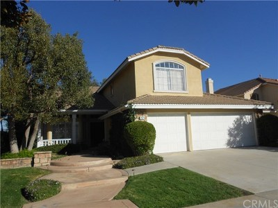 Corona Single Family Home For Sale: 291 Andes Way
