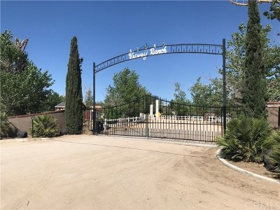 Apple Valley Single Family Home For Sale: 10291 Deep Creek Road