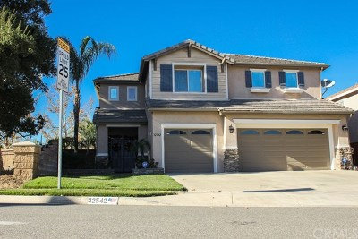 Lake Elsinore Single Family Home For Sale: 32542 Lost Road