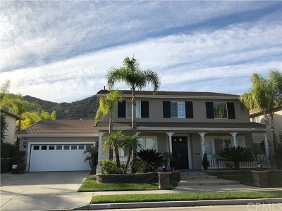 Murrieta CA Single Family Home For Sale: $745,000