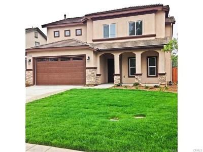 Riverside Single Family Home For Sale: 865 Mallorca