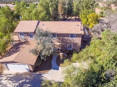 Perris Single Family Home For Sale: 22120 Juniper Road