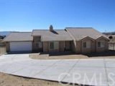 Hesperia Single Family Home For Sale: 10909 E Avenue