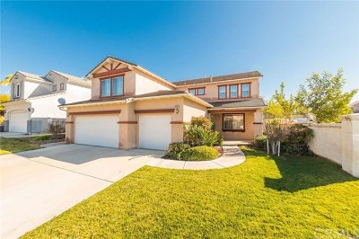 Temecula Single Family Home For Sale: 33355 Twin Hills Way