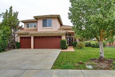 Lake Elsinore Single Family Home For Sale: 21 Bella Donaci